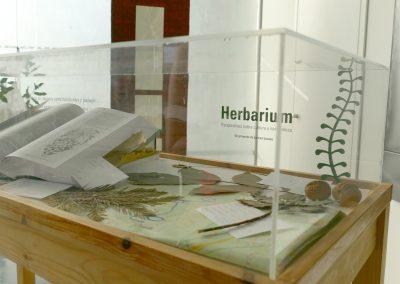 06galeria_herbarium